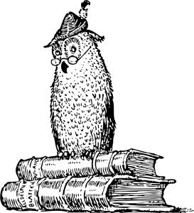 knatschke owl copy